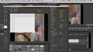 Screen Shot 2013-09-15 at 7.25.14 PM