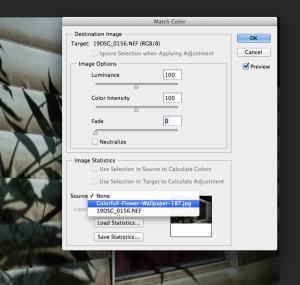 Screen Shot 2013-10-02 at 10.10.54 PM